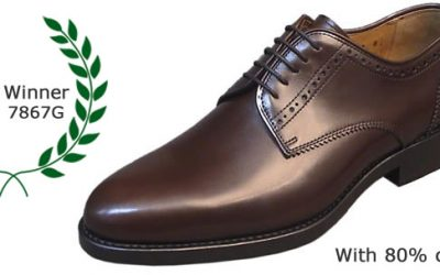 How will be the perfect shoe for man?