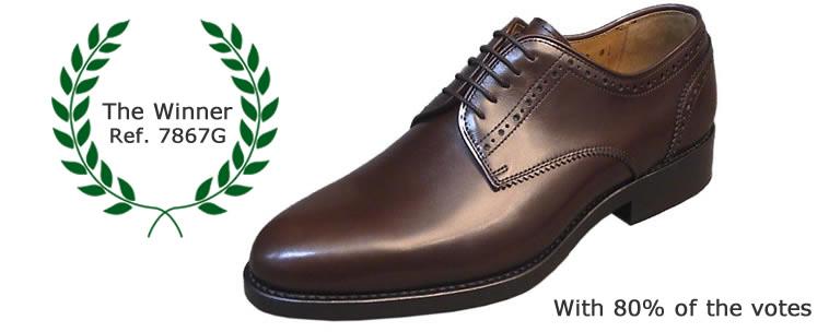 Shoe ref. 7887G